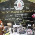 Pakanga 'Buck' Te Whitu